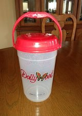 Dollywood Large Plastic Container with Handle in Oswego, Illinois
